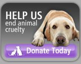 ASPCA Donatebutton
